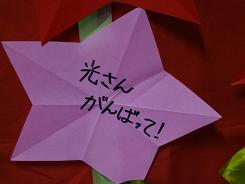 20131104_star4